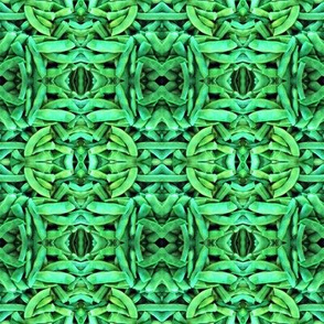 Green Bean Kaleidoscope