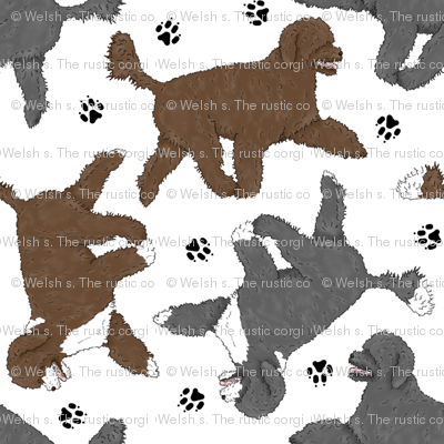 Trotting Portuguese water dogs and paw prints A - white