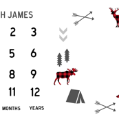 "milestone blanket - buffalo plaid for 52"" + WIDE FABRICS ONLY"