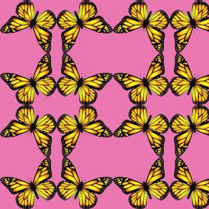 butterfly_B-ch
