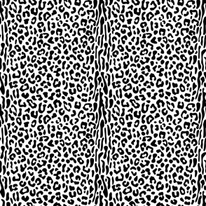 Black and White Animal Skin