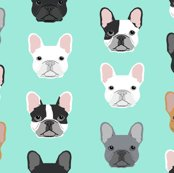 R5884355_r5112099_rrfrench_bulldog_mint_shop_thumb