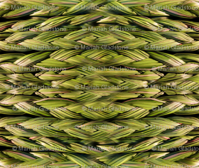 Rsweetgrass-braids-large_ed_ed_preview