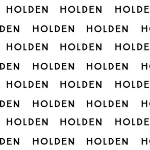 Holden Fabric