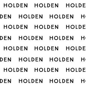 Holden Fabric