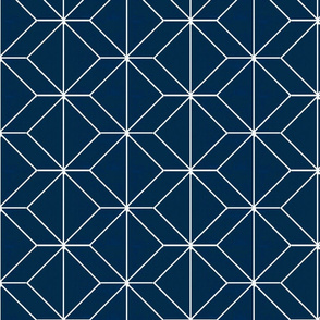 Geometry French Navy
