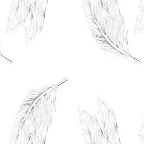 Dual Feathers