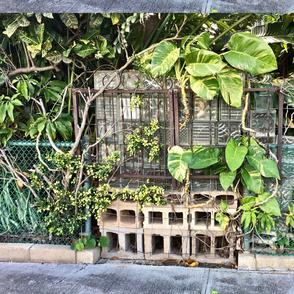 Hawaii Wabi Sabi Fence