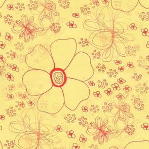 Yellow Anemones - Giant