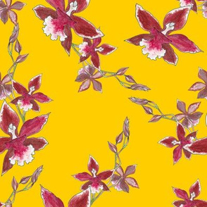 Red orchid flowers on a golden yellow background