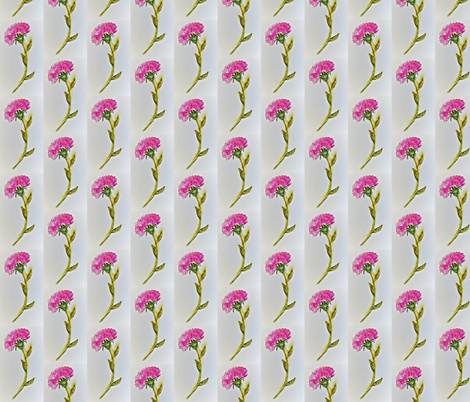 Pink_Carnation fabric by karen_trout's_art on Spoonflower - custom fabric