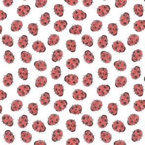 Ladybug Party Small