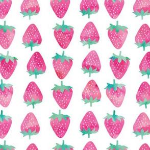 strawberries - pink watercolor