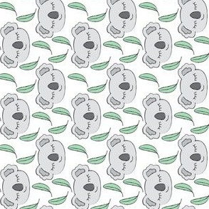 grey koalas and eucalyptus