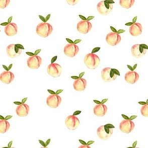 watercolor peaches || white