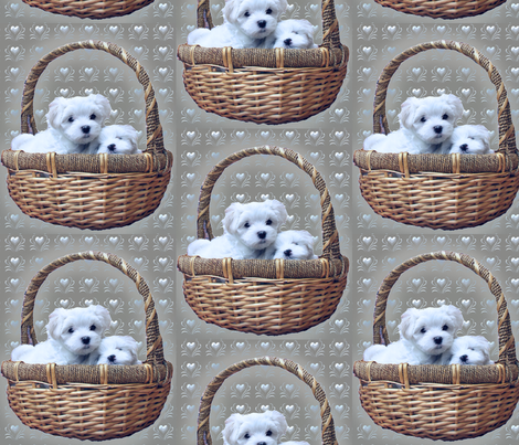 maltese_in_basket fabric by dogdaze_ on Spoonflower - custom fabric