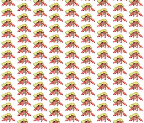 Rhermit_crab_illustration_transparent_background_shop_preview