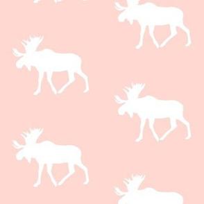 moose on rose