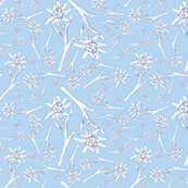 Edelweiss Lace Light Blue