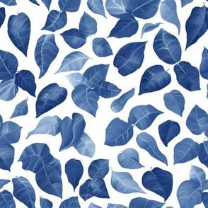 Windfall_Blue