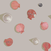 Sea Shells and Scallops