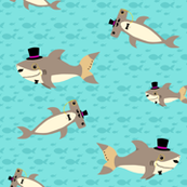 Dapper Sharks