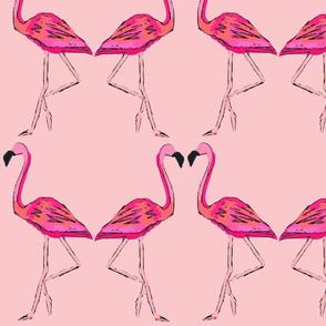 FLamingo_sketch-ch
