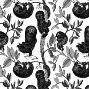 Anne Grön – Three Toed Sloth