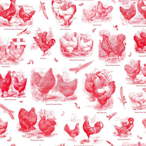 Poultry Envy White Red Toile