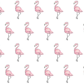 Stand Tall Flamingos