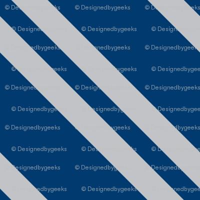 Magic School Inspired Raven House Diagonal Movie Stripes