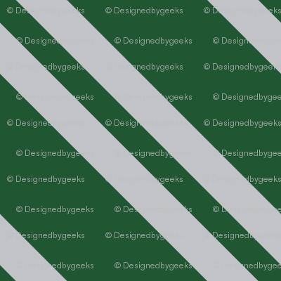 Magic School Inspired Snake House Diagonal Stripes