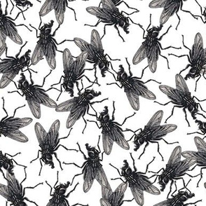 Flies black&white