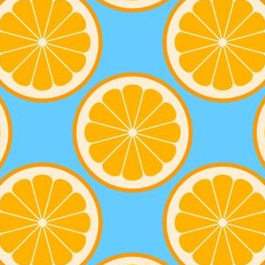 citrus slices R4X : orange