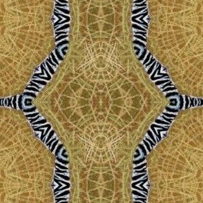 tribal_circle
