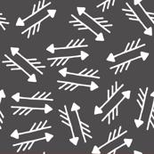 Crazy Arrows