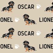 custom name double dapple doxie fabric cute dog design