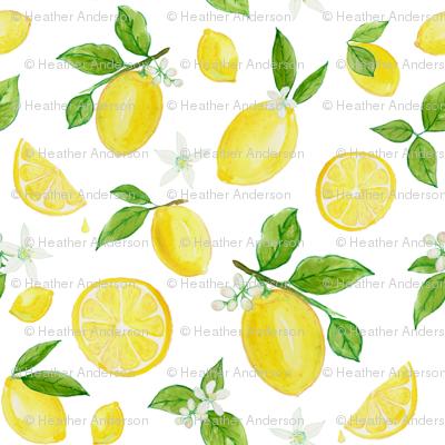 Lemons in Watercolor