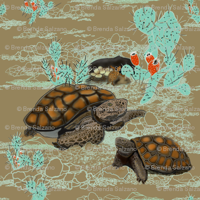 Desert Tortoise in brown and Aqua by Salzanos
