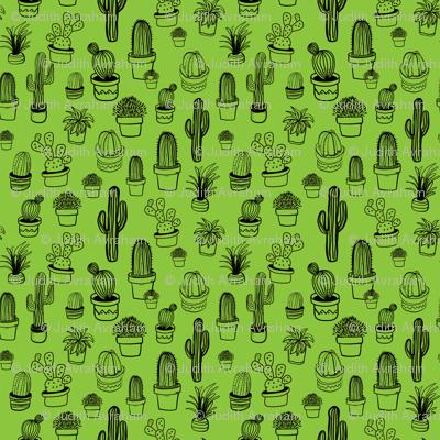 Rja-cactus_bw-green-01-01_preview