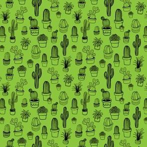 ja-cactus_bw-green-01-01
