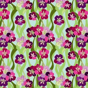 Nasturtium Purples