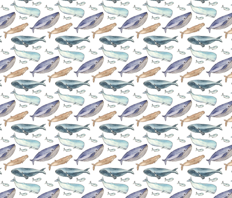 whales family fabric by alenaganzhela on Spoonflower - custom fabric