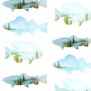 Fish Landscapes