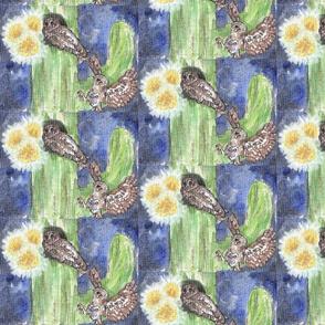 Elf Owl & Saguaro Cactus