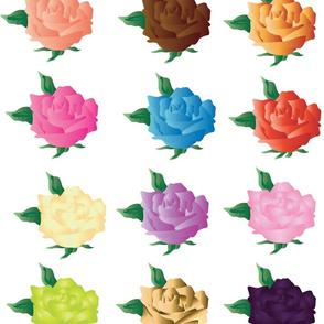 A dozen colorful roses