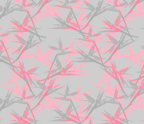 Rstrelitze_cool_pink_shop_preview