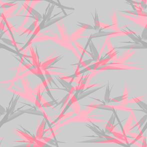 BirdofParadise_cool_pink
