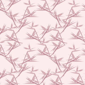 BirdofParadise_pink_small
