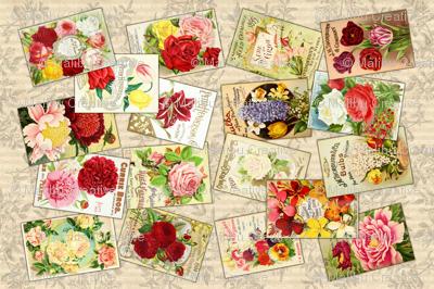 Tea Towel - Vintage Seed Catalogs